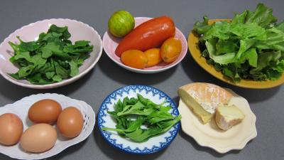 Ingrédients pour la recette : Tétragone en salade