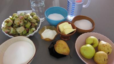 Ingrédients pour la recette : Rhubarbe, croustillants, granité pommes poires