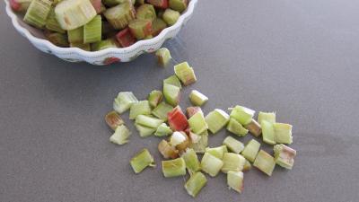 Rhubarbe, croustillants, granité pommes poires - 5.1