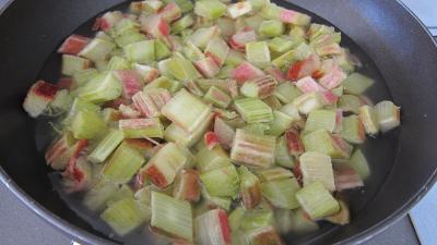 Rhubarbe, croustillants, granité pommes poires - 5.3