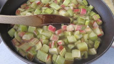 Rhubarbe, croustillants, granité pommes poires - 6.1
