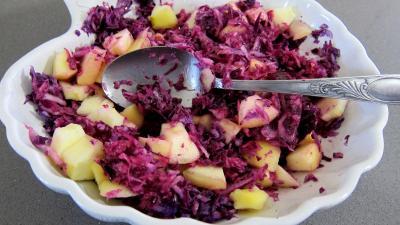 Chou rouge aux pommes et crudités - 4.2