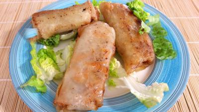 carotte fane : Assiette de rouleaux de boeuf et de poulet à la chinoise