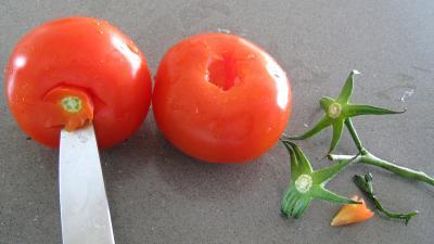 Salade niçoise - 2.4