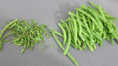 Salade niçoise - 5.2