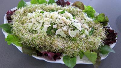 Couscous, légumes, fines herbes et gambas - 7.1