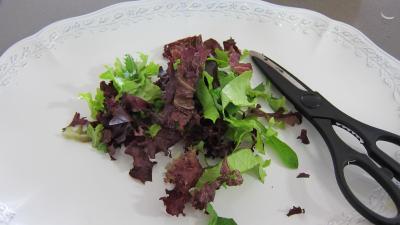 Limandes et sa salade de pousses de bambou et graines germées - 4.2