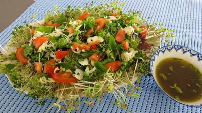 Limandes et sa salade de pousses de bambou et graines germées - 4.4