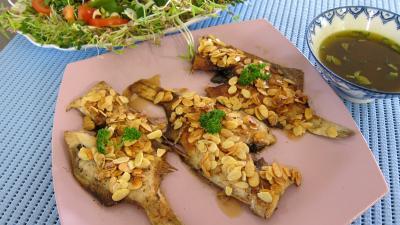 Image : Assiette de limandes et sa salade de pousses de bambou et graines germées