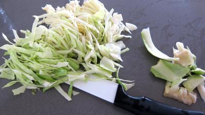 Faisan au chou et aux carottes - 4.3