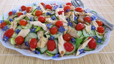 germe de soja : Assiette de restes de poulet en salade