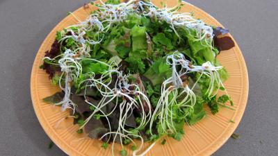 Magrets en brochettes à la plancha en salade - 3.2