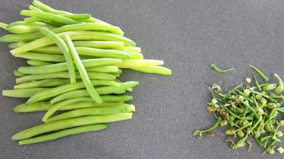 Ballotins d'asperges, d'haricots beurre et carottes - 1.2