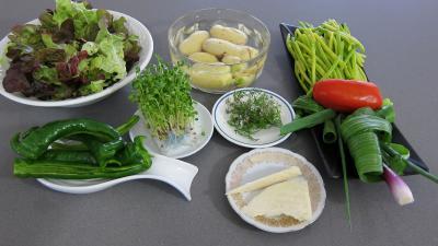 Ingrédients pour la recette : Piments doux en salade