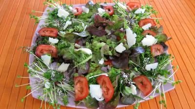Piments doux en salade - 7.3
