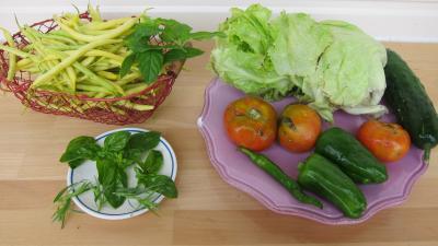 Ingrédients pour la recette : Salade haricots beurre du jardin