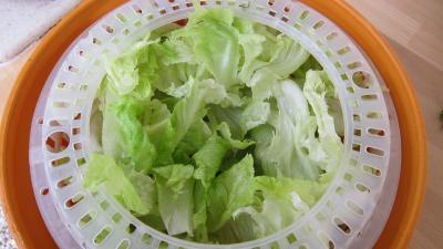 Salade haricots beurre du jardin - 1.2