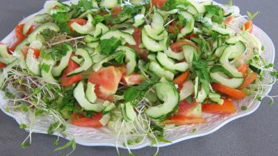 Salade haricots beurre du jardin - 7.2