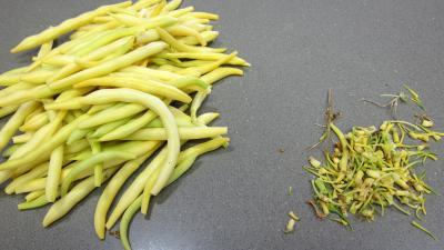 Blanquette de légumes - 5.4