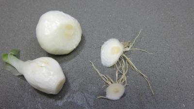 Artichauts en ratatouille - 2.2