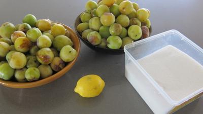 Ingrédients pour la recette : Marmelade facile de prunes variées
