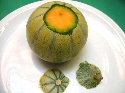 Salade de melon aux myrtilles - 1.1