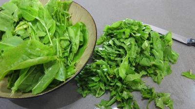 Conserve de ragoût de blettes et d'oseille au basilic - 3.1