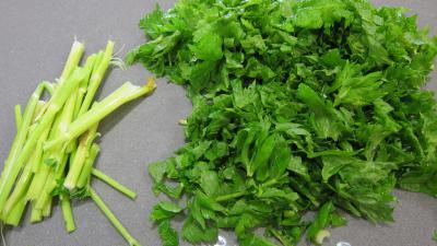 Conserve de ragoût de blettes et d'oseille au basilic - 4.1