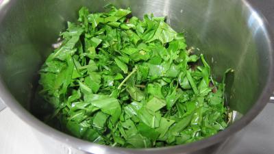 Conserve de ragoût de blettes et d'oseille au basilic - 7.2