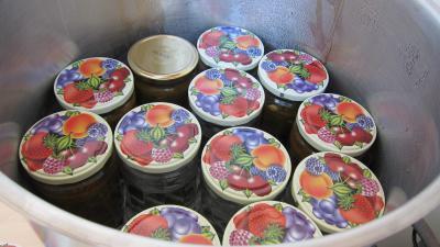 Conserve de ragoût de blettes et d'oseille au basilic - 10.2