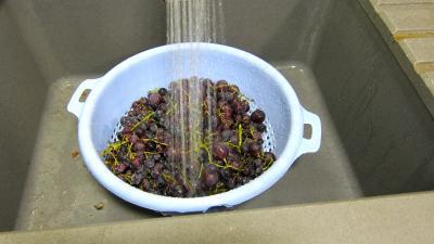 Confiture de raisins - 1.1