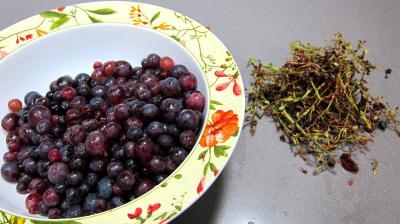 Confiture de raisins - 1.3