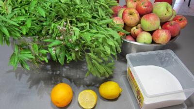 Ingrédients pour la recette : Gelée de pommes à la verveine