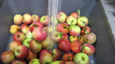Gelée de pommes à la verveine - 3.2