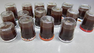 Gelée de pommes à la verveine - 7.2