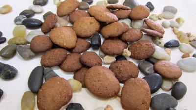 Recette Croquants aux noisettes sans gluten
