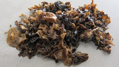 Crêpes farcies aux brocolis, épinards et champignons noirs - 3.2