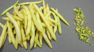 Macaronis aux oeufs - 2.1