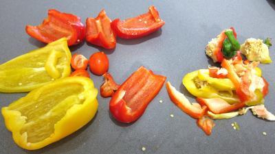 Roussette aux poivrons - 3.1