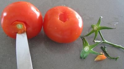 Tomates-cerises à la mozzarella - 2.2
