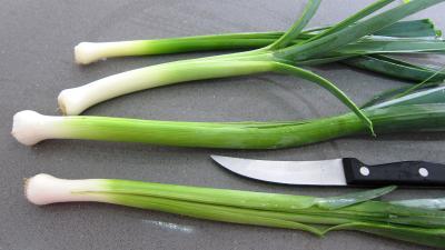Bouillon de légumes à l'oignon rouge - 1.2