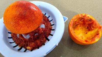 Sauce vinaigrette à la mangue - 1.2