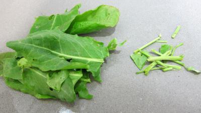Salade de magret au Cantal - 3.1