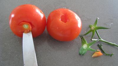 Chutney aux poivrons - 6.1