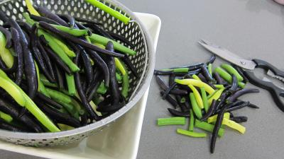 Haricots verts et courgettes gratinés aux fines herbes - 1.3