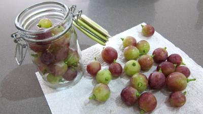 Raisins à l'eau de vie et épices - 5.3