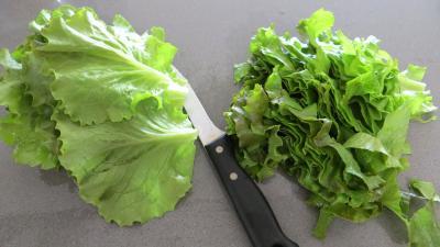 Soupe minceur de batavia et légumes - 3.2