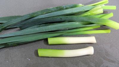 Soupe de lotte d'automne aux légumes - 3.2