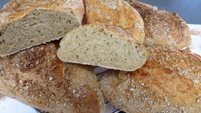 fête du pain : Pains au cidre