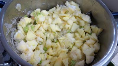 Confiture de pommes à la rhubarbe façon compote - 4.1